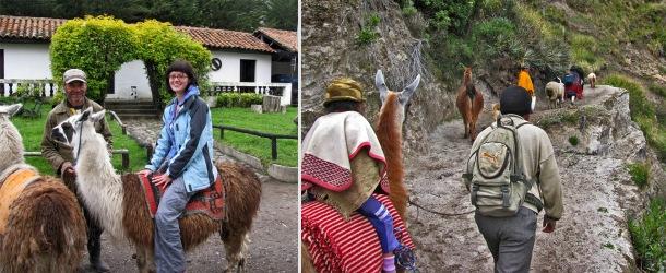 Riding llamas in Tigua, Ecuadorian Andes, Quilotoa Loop