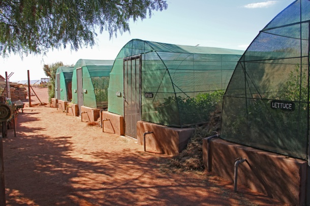 Greenhouses at Wolwedans Dunes Lodge, NamibRand Nature Reserve, Namibia