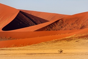 Friday Photo: Namibia's Sea ofSand