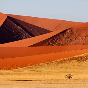 Friday Photo: Namibia's Sea of Sand