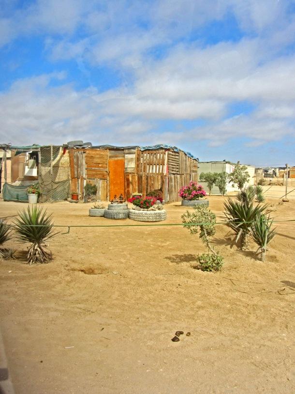 Township gardens in Mondesa, Swakopmund, Namibia