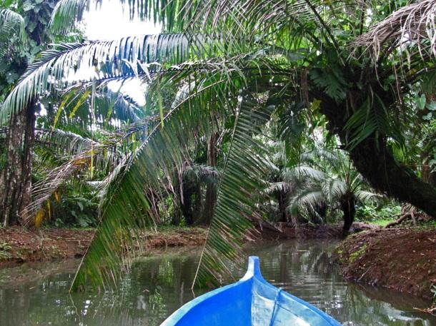Cayuco ride on Isla Bastimentos, Bocas del Toro, Panama