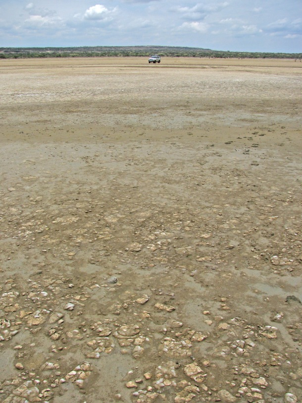 Car on dry lake bed of Lake Abiata, Abidjatta-Shalla National Park, Ethiopia
