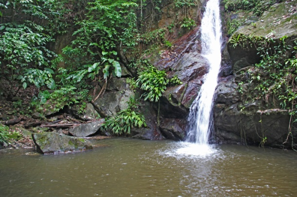 Castara waterfall trek, Tobago. Waterfall in the middle of the jungle.