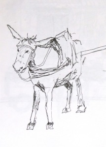 Pen and paper drawing of a donkey in Marrakech, Morocco