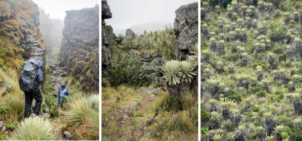 Paramo de Oceta trekking near Mongui, Colombia