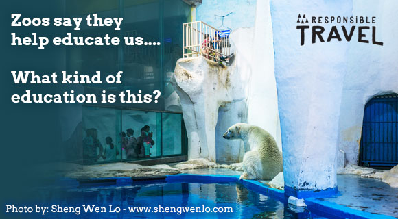 Responsible Travel's campaign to boycott zoos